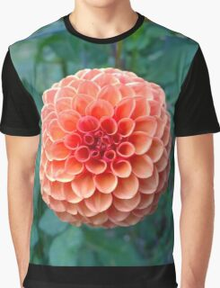 .Brilliant Dahlia. Graphic T-Shirt