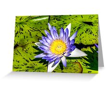 Lilly #4621 Greeting Card