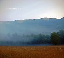Smoky Mountains Scene-800476 by Michael Byerley