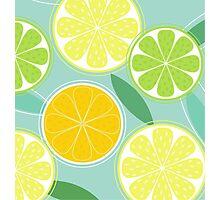 Citrus fruit background vector - Lemon, Lime and Orange Photographic Print