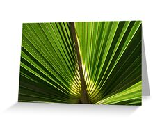 Frond Greeting Card