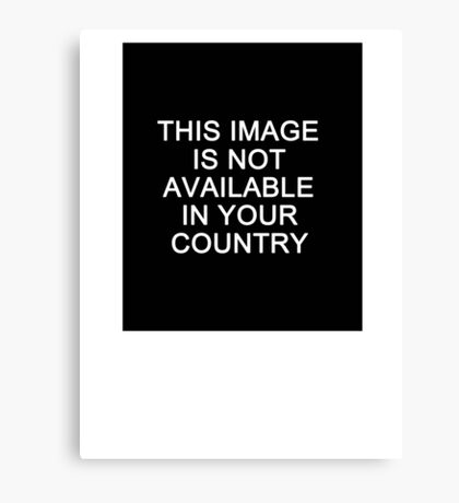 This image is not available in your country Canvas Print