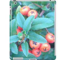Cotoneaster 2 iPad Case/Skin