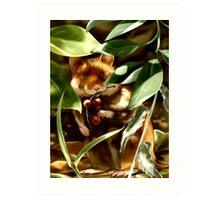 European Hamster under Shadows Art Print