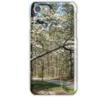 Just Past the Flowering Dogwood iPhone Case/Skin