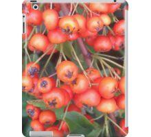 Cotoneaster 4 iPad Case/Skin