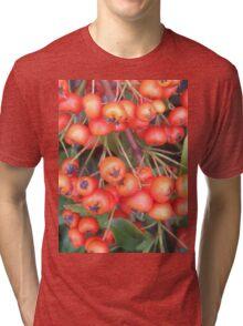 Cotoneaster 4 Tri-blend T-Shirt