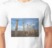 City greco-roman of Jerash Unisex T-Shirt