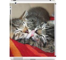 Kittens Sleeping Cuties iPad Case/Skin