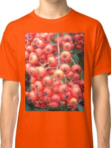 Cotoneaster 5 Classic T-Shirt