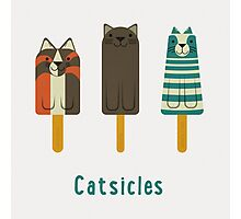 Catsicles Photographic Print