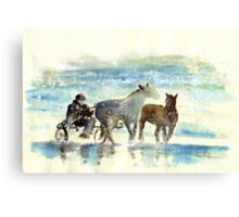 Horse Carriage On A Beach Canvas Print