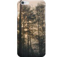 Smoky Mountains Scene-600476 iPhone Case/Skin