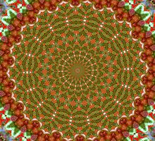 Red and Green Christmas Kaleidoscope by taiche