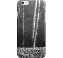 Smoky Mountains Scene-002948 iPhone Case/Skin