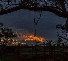 Sunset at the Cattle Yard - Kilcowera Station by Malcolm Katon