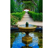 Mottisfont  fountain Photographic Print