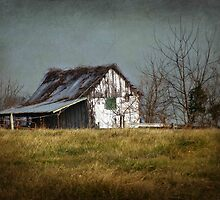 Derelict Barn - Antietam Battlefields by Bine
