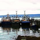 Fishing Boats - Sligo, Connacht, Ireland by Shulie1
