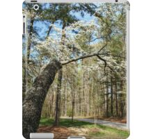 Beyond the Dogwood and Down the Road iPad Case/Skin