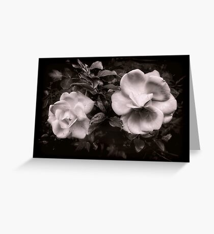 Vintage Roses in Antique Tones Greeting Card