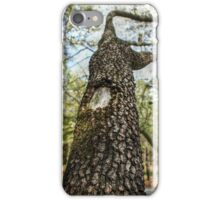 Mossy Branches iPhone Case/Skin
