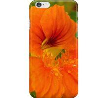 Garden Nasturtium iPhone Case/Skin