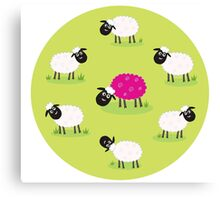 One pink sheep is lonely in the middle of white sheep family Canvas Print