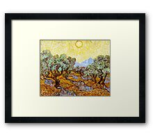 Van Gogh - Olive Trees with Yellow Sky and Sun Framed Print