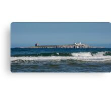Farne Islands Canvas Print