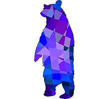 Cool grizzly bear design Photographic Print