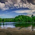Waitakere River by Paul Mercer