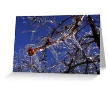 Shining branches Greeting Card