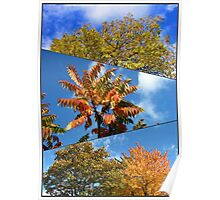 Autumn Glory Collage Poster