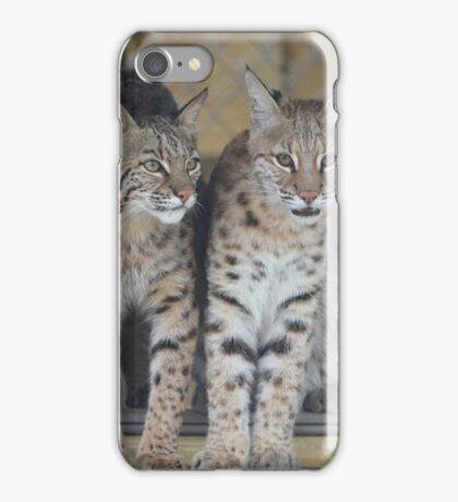 Bobcats iPhone Case/Skin