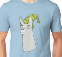 caaarrrrllllll Unisex T-Shirt