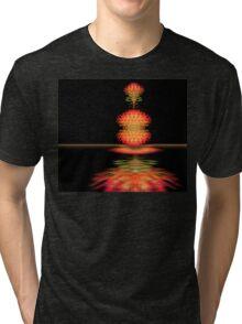 4294 Tri-blend T-Shirt