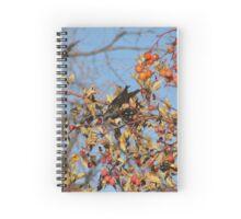 European Starling in Autumn Cherry Tree #1 Spiral Notebook