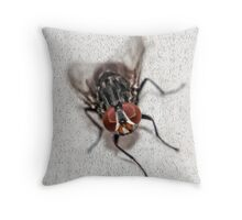 Fly Closeup Throw Pillow