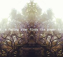 when you smile, a fading star finds the power to shine again by lisaLK