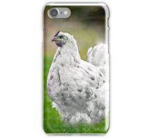 punk star chicken iPhone Case/Skin