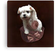 MALTESE PUPPY-JUST PLAYIN WITH MY YO-YO - I WONDER IS ANYBODY WATCHING LOL /PILLOW / TOTE BAG Canvas Print