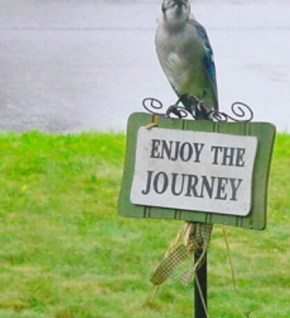 Blue Jay, Enjoy Your Journey Sign, Life Is Good, Nature, Birds Sticker