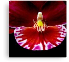 Prom - Orchid Alien Discovery Canvas Print