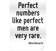 Perfect numbers like perfect men are very rare. Poster