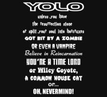 YOLO by kayve
