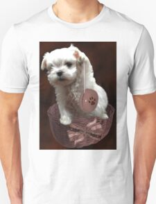 MALTESE PUPPY-JUST PLAYIN WITH MY YO-YO - I WONDER IS ANYBODY WATCHING LOL /PICTURE/CARD T-Shirt