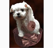 MALTESE PUPPY-JUST PLAYIN WITH MY YO-YO - I WONDER IS ANYBODY WATCHING LOL /PICTURE/CARD Unisex T-Shirt