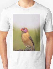 Waxbill - Colorful Birds from Africa T-Shirt