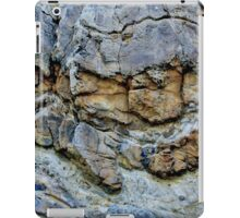Rock Chasm iPad Case/Skin